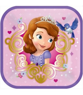 Sofia The First Lunch Plates