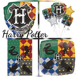 HARRY POTTER PARTY PACK 1