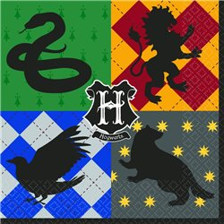HARRY POTTER PARTY PACK 2